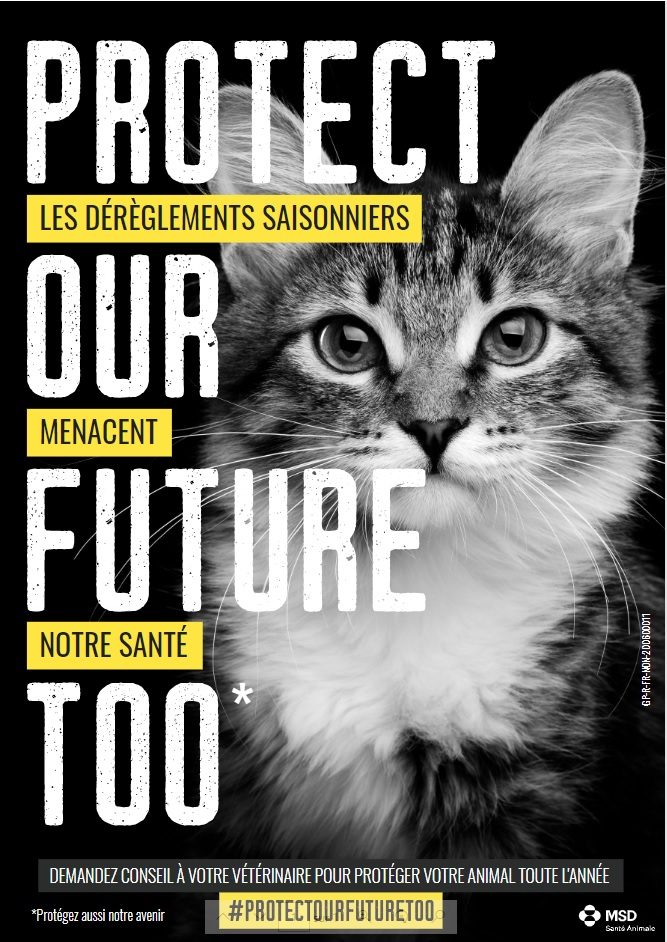 affiche protect our future too chat