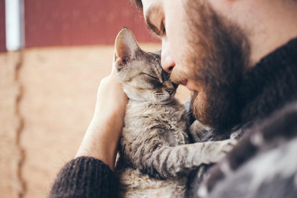 moment câlin chat homme